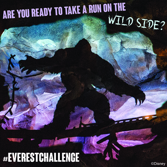 Show your #DisneySide at the Final Expedition Everest Challenge at Walt Disney World Resort