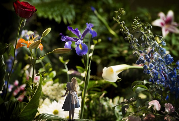 Festival Flowers Inspires a Unique 'Alice in Wonderland' Photo at Walt Disney World Resort