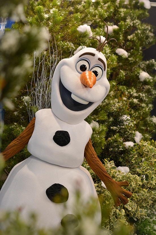 Frozen Summer Fun Is Set to Cool Down Disney's Hollywood Studios