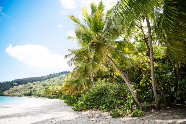 Exploring Tortola with Disney Cruise Line