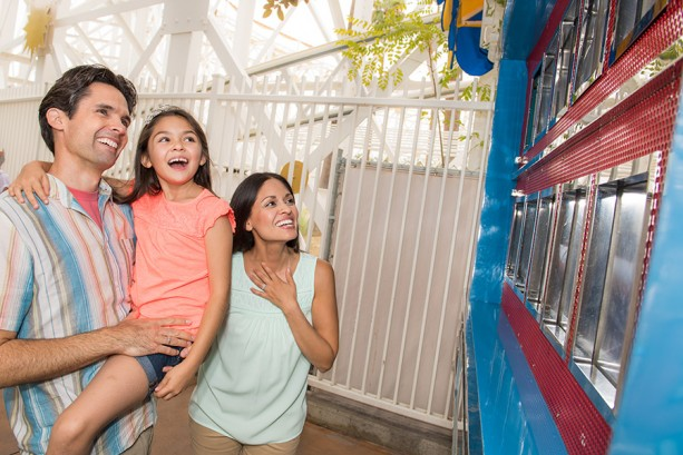 Download the Disneyland App Today for Access to Your Memories at Your Fingertips