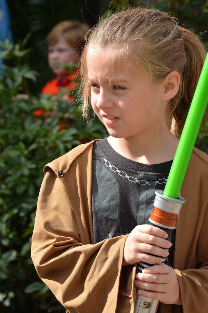 Capturing Memories at Jedi Training: Trials of the Temple