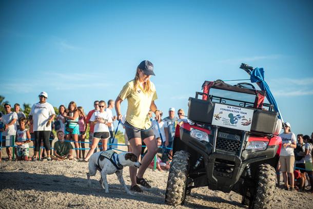 Wildlife Wednesday: Start Your Engines! Tour de Turtles Marathon Begins