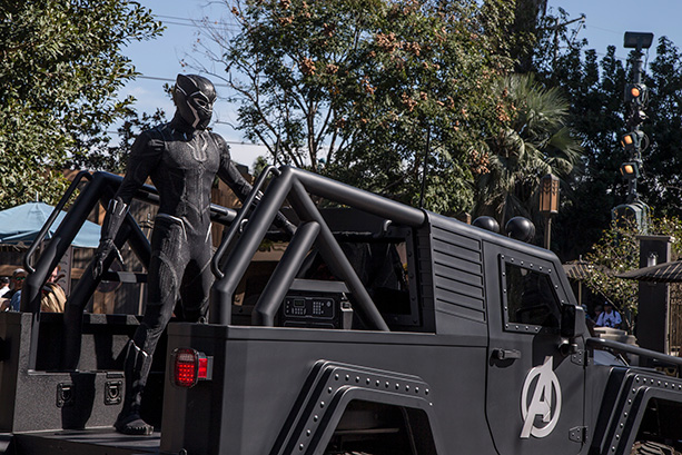 Black Panther Now Appearing at Disney California Adventure Park