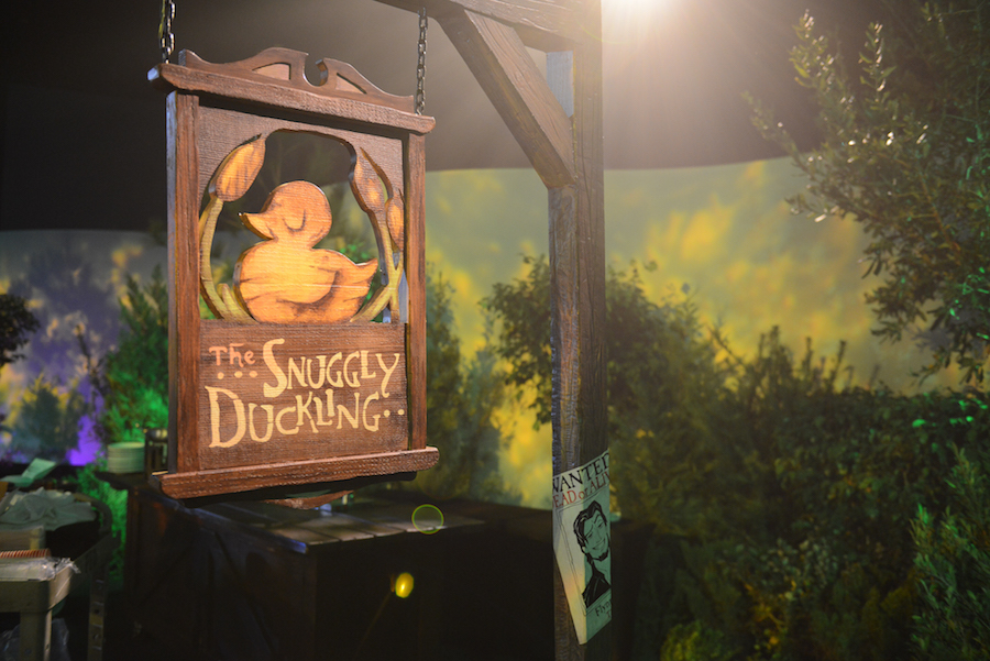 Signature Photo Opportunities For Your 'Tangled'-Inspired Milestone Celebration