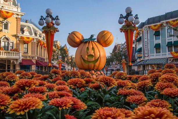 A Walk in the Park: Autumn at Disneyland Resort