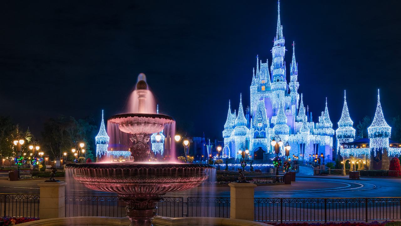 Disney Parks Blog Weekly Recap – Mickey's Very Merry Christmas Party, Rare Okapi Birth Celebrated and More