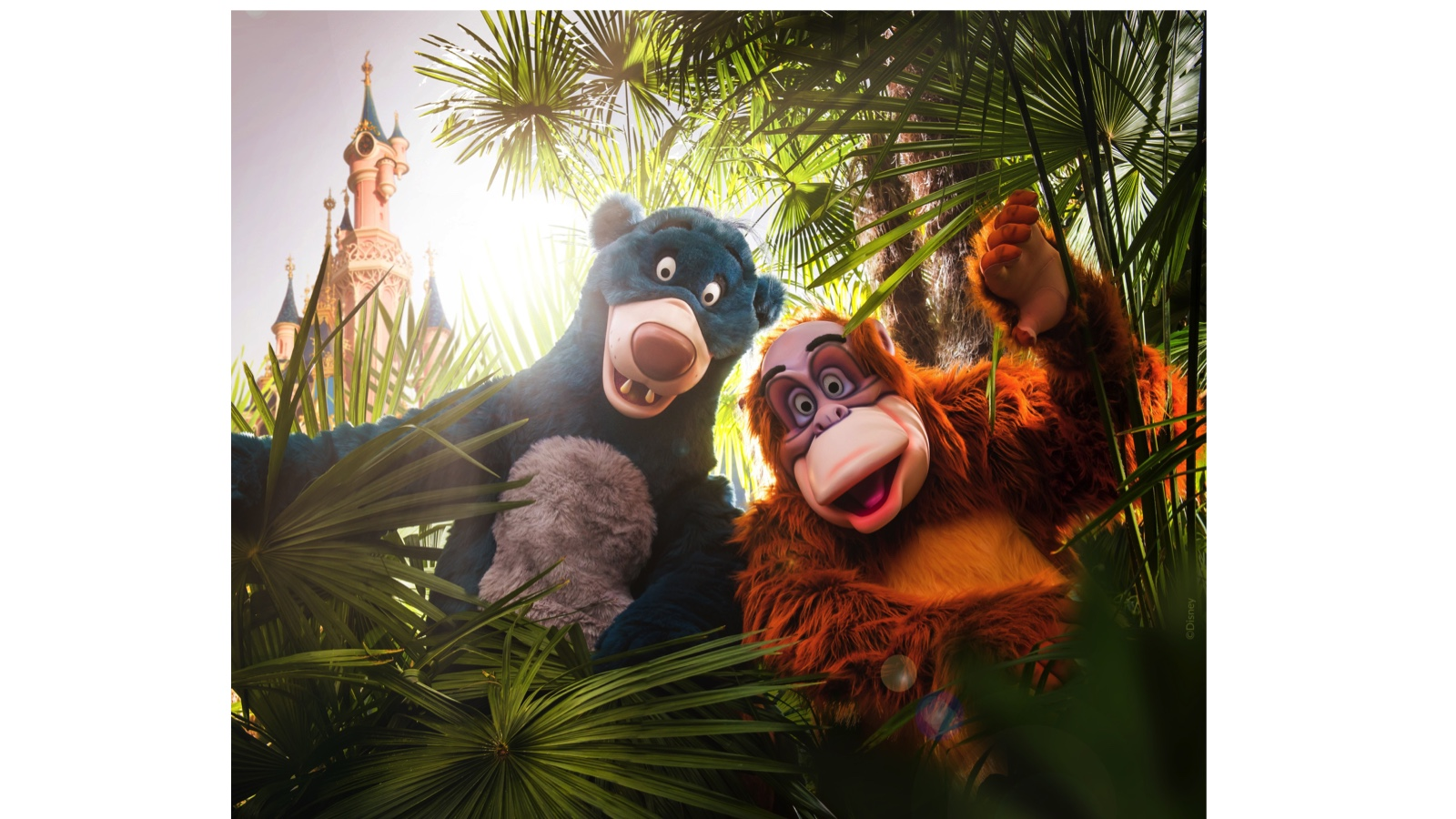 The Lion King & Jungle Festival Starts June 30 at Disneyland Paris