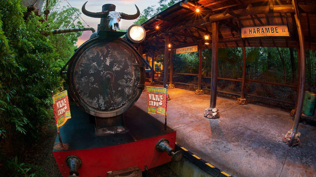 Circle of Flavors: Harambe at Night Coming to Disney's Animal Kingdom
