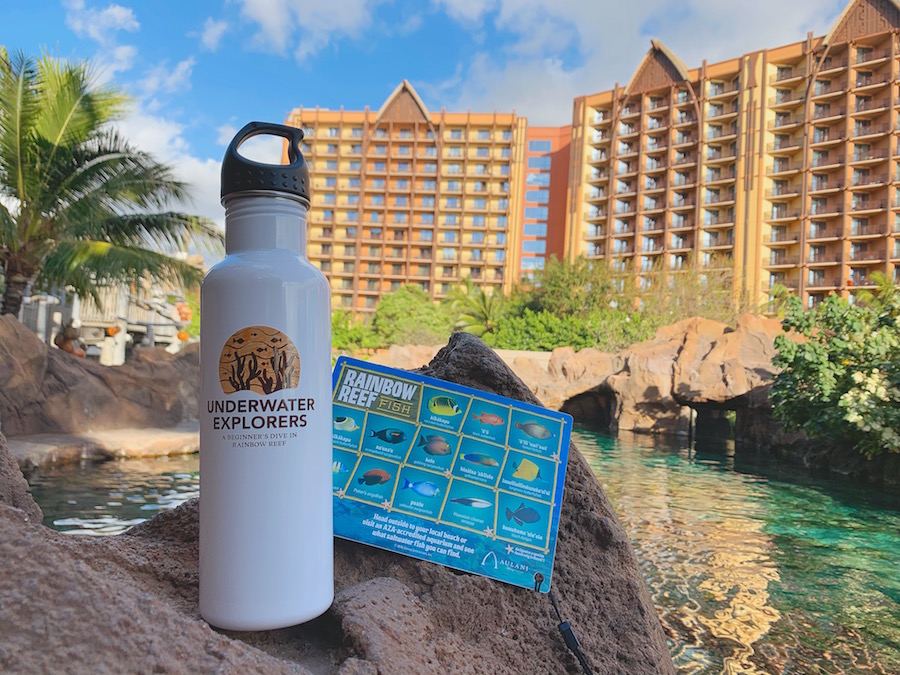 Rainbow Reef Flask and Fish ID Card