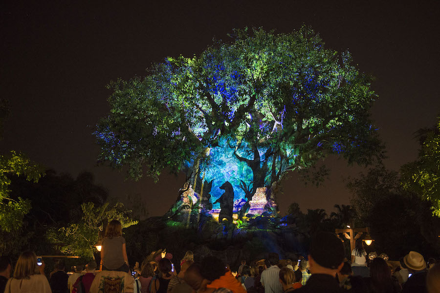 The Ultimate Insider's Guide to Special Events at Walt Disney World Resort