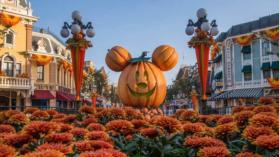 Look Closer: Pumpkin Festival on Main Street, U.S.A. at Disneyland Park