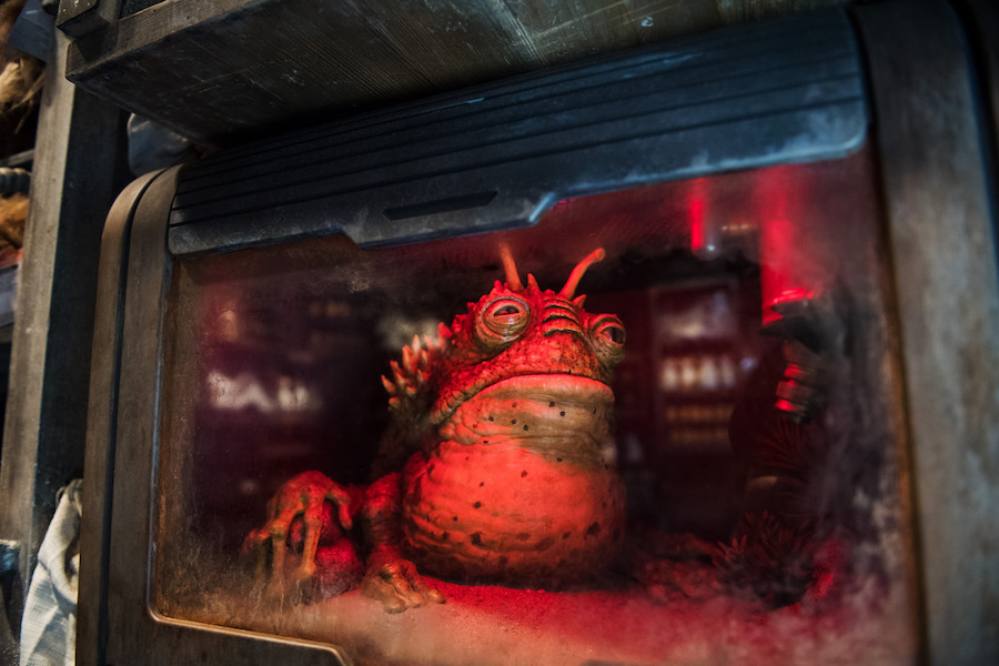 Find Your #HappyPlace: The Most Notorious Watering Hole in the Galaxy, Oga's Cantina