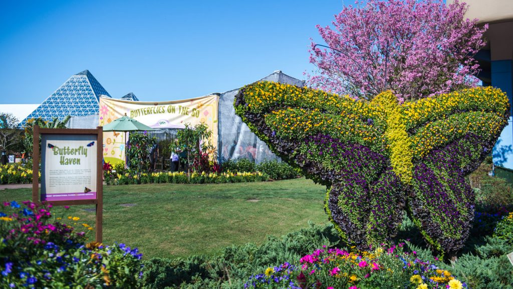 Disney Parks Blog Weekly Recap – Early Look at 2020 Epcot International Flower & Garden Festival, Disney's Riviera Resort Opens and More…